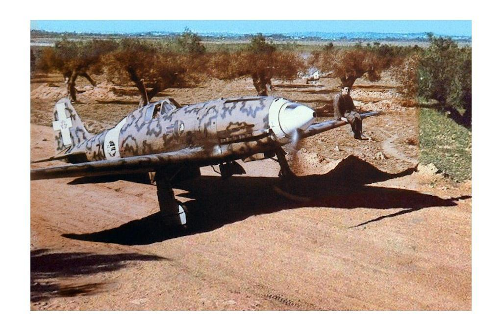 A 1943 photo of a Macchi C.202 of the 17th Gruppo in Pantelleria.