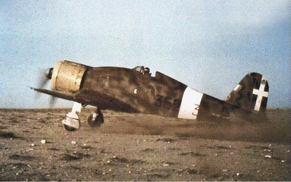 Another color photograph of the Fiat G.50 Freccia of the 352 Squadron in Libya.