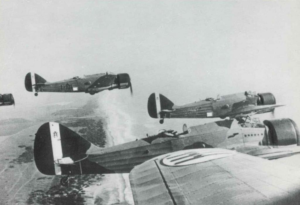 A formation of Breda Ba.64 in flight.
