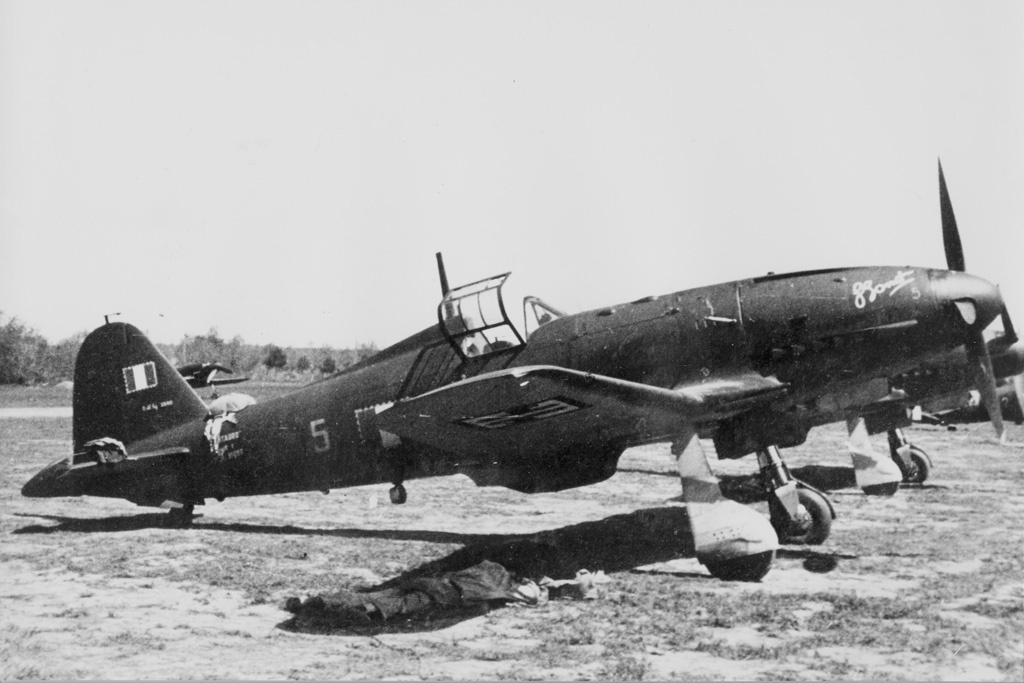 A Fiat G.55 of the Squadriglia Bonet of the Aeronautica Nazionale Repubblicana.